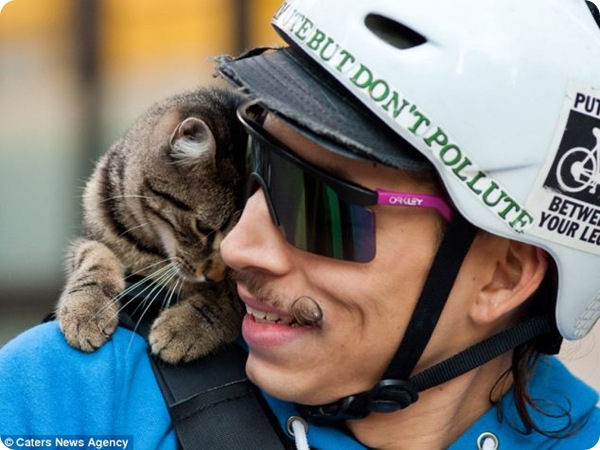 Кошка-почтальон