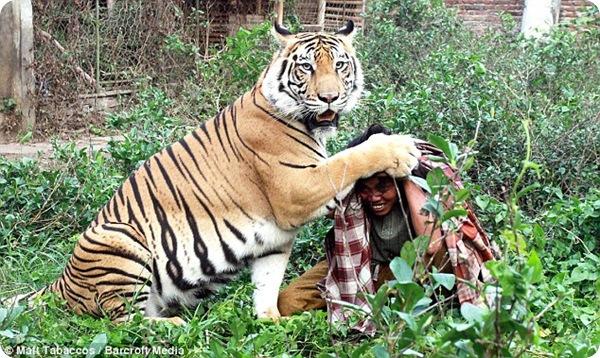 Абдула Шоле и его лучших друг тигр Мулан
