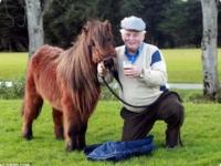 Пони-работяга Тоби отпраздновал выход на пенсию