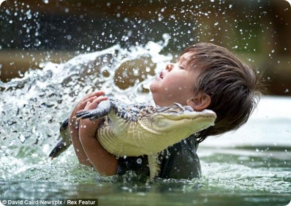 Малыш Чарли и его ручной аллигатор Гамп
