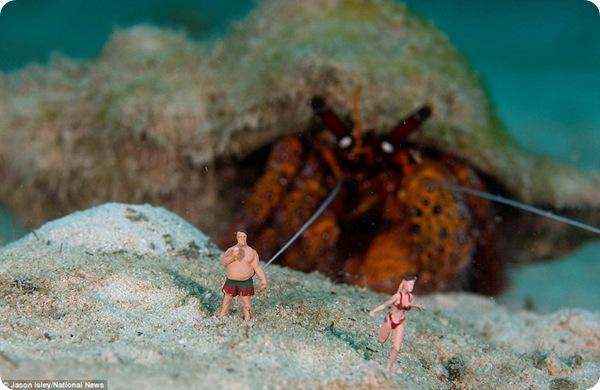Подводный мир Джейсона Ислея