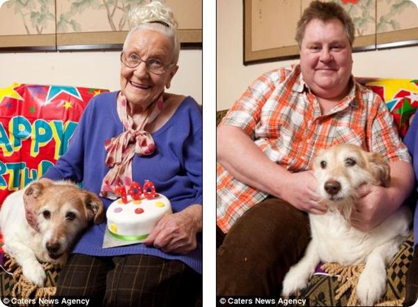Дейси - самая старая собака Великобритании