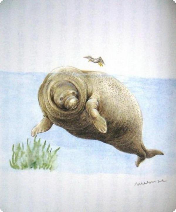 Стеллерова корова (лат.Hydrodamalis gigas) — морская корова или капустница