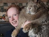 Ральф — Самый большой в мире кролик!