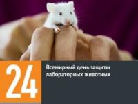 24 апреля — День защиты лабораторных животных
