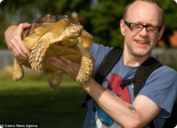 Англичанин каждый день совершает прогулки с черепахой!