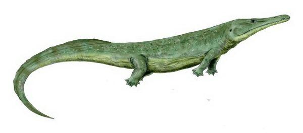 Прионозухус (лат. Prionosuchus)