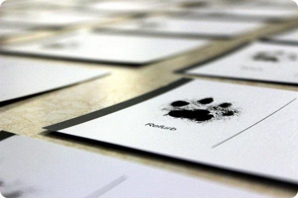 Кошка Refurb принесла удачу приютам для животных