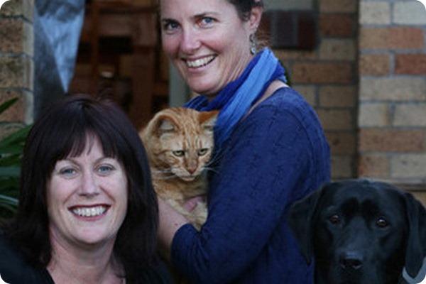 Пес-донор спас жизнь коту