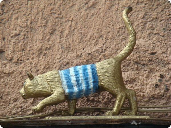 Кошка Тишина Матроскина, Санкт-Петербург