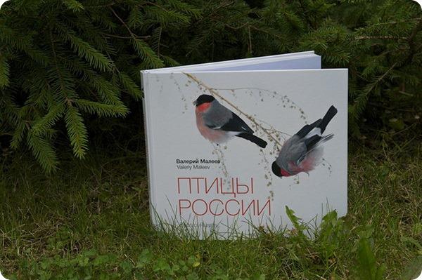 Найди свою «птицу счастья» !