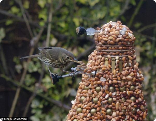 Игрушка Далек стала кормушкой для белок и птиц