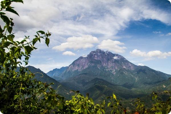 Гора Кинабалу. Место жительства гигантской красной пиявки.