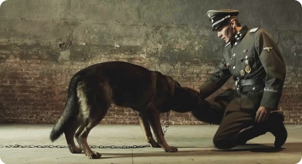 Фильм «Брут». Война глазами и чувствами немецкой овчарки.