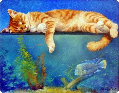 Кошки Татьяны Дерий